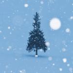 きらきら舞う雪を撮影