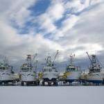 雪・船・カモメ!!流氷が来る前の港に行って一眼レフカメラで撮影しました!!