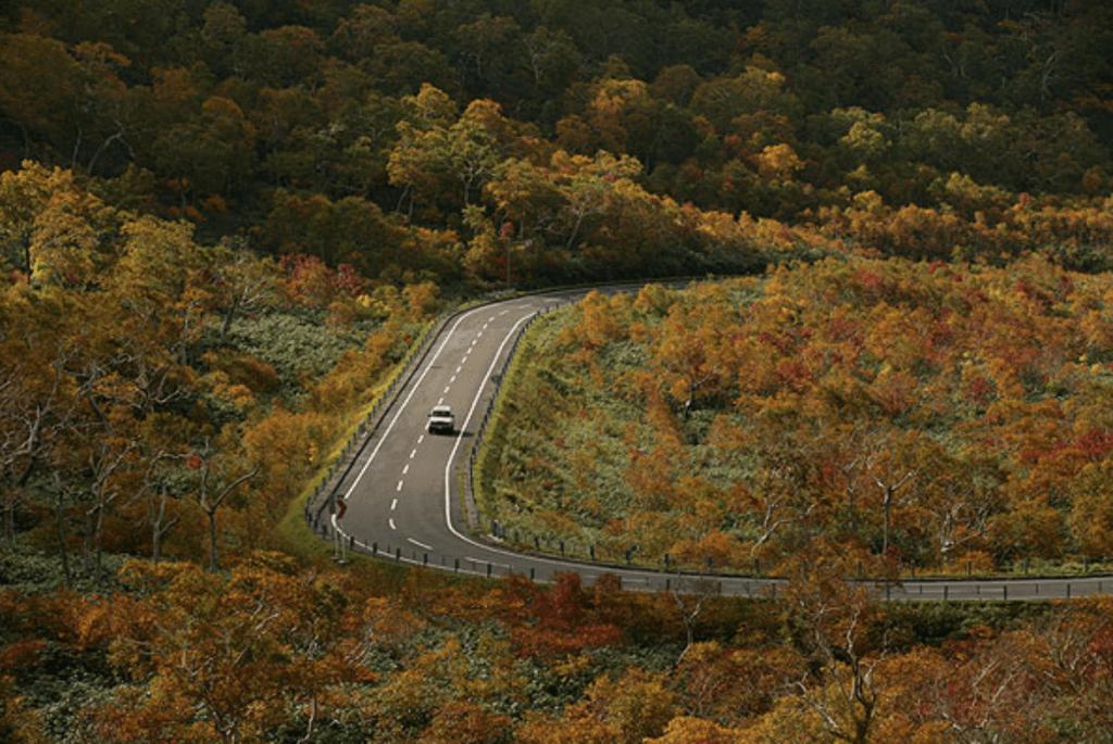 引用:北海道の風景写真/紅葉のニセコパノラマライン