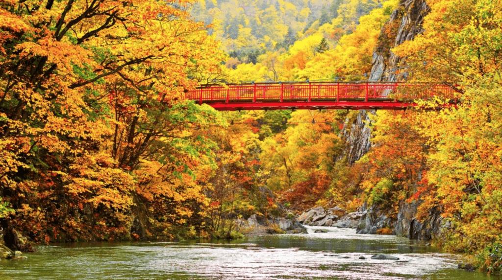 参考:RETRIP/360度紅葉の世界!大自然あふれる「定山渓」で温泉と共に楽しむ紅葉狩り