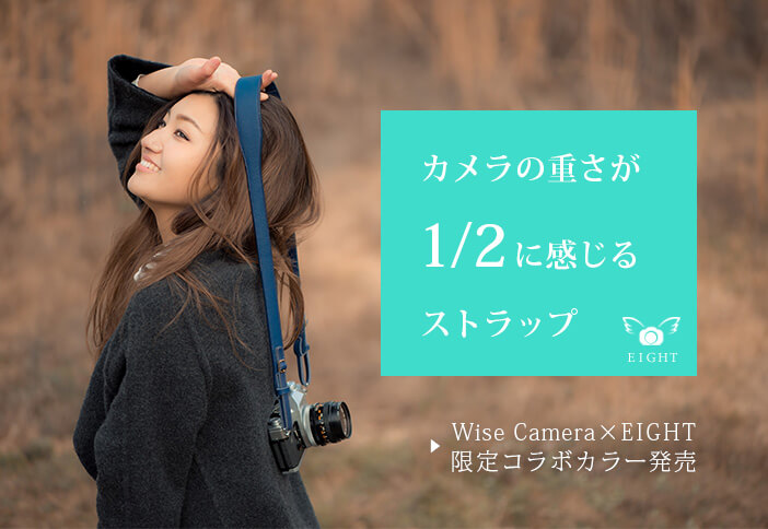 WiseCameralimited