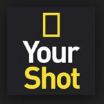ナショナルジオグラフィック「Your Shot」で「DAILY DOZEN」に初めて選ばれた!