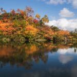 紅葉の名所、高原温泉に行ってきた!今年も素晴らし紅葉を見られた!