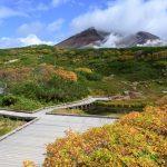 一足早く大雪山系旭岳の紅葉を見てきた!見頃はもう少しだった。