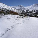一足早く冬の大雪山系旭岳を見てきた!あっという間に雪山になりました。
