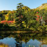 大雪高原沼へ紅葉を見てきた。ピークの紅葉を見られた。