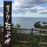 野生のラッコを見に霧多布岬へ行ってきた話。